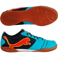 puma powercat ic